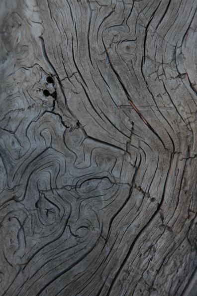 textures_grain
