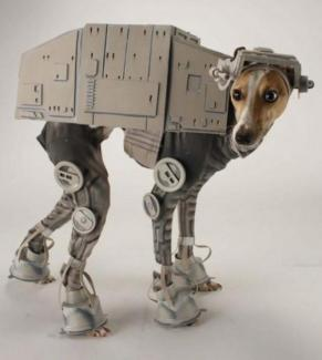 greyhound_starwars