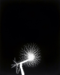 hiroshi_sugimoto_lightningfield_tree
