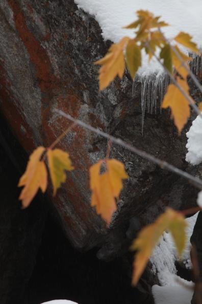 textures_snow