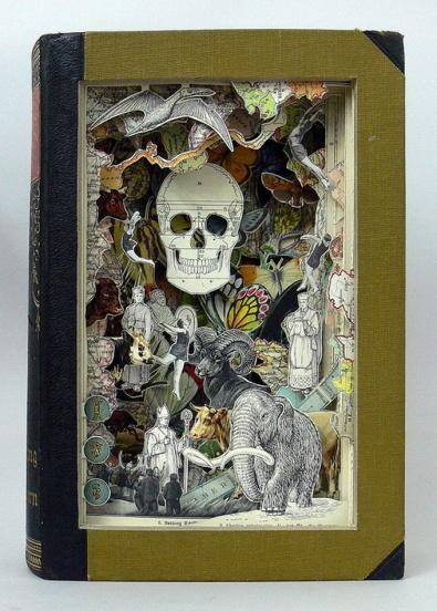 alexander_korzer_robinson_skull