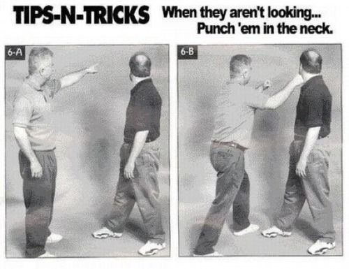 fighting_techniques