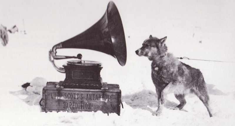 Sled_dog_and_gramophone_-_Terra_Nova_Expedition