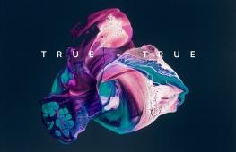true_is_true4
