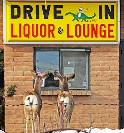 alcoholic_deers