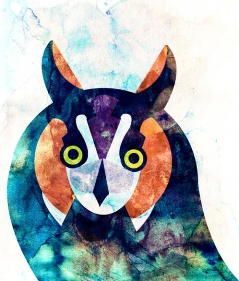 alvaro_tapia_hidalgo_owl