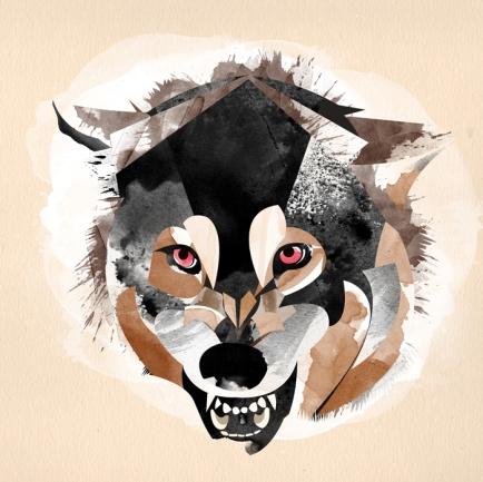 alvaro_tapia_hidalgo_wolf