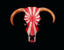 japanese_cowskull