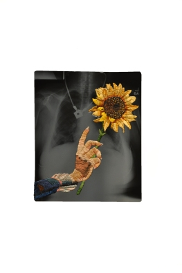 matt_cox_sunflower