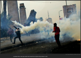 nytl_teargas__tossback