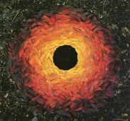 andy_goldsworthy_leaf_portal