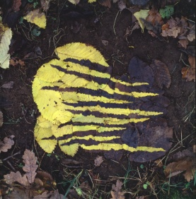 andy_goldsworthy_torn