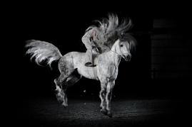 horse_control