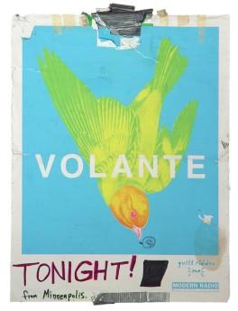 Volante_aa