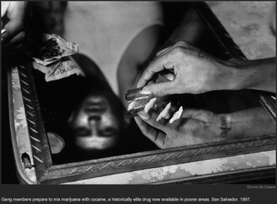 nytl_mirror