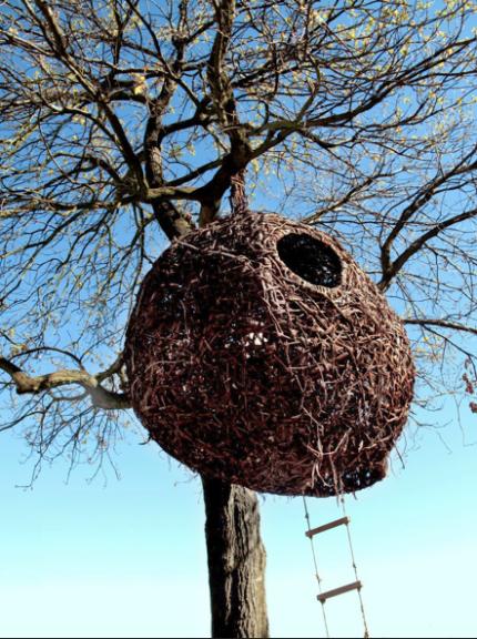 human_nest