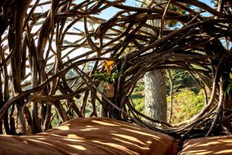 human_nest_interior
