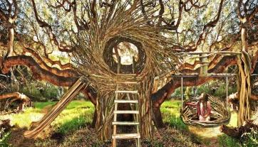 human_nest_spiritnest_jayfann