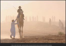 nytl_camel_race