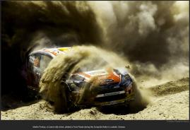 nytl_rally_car