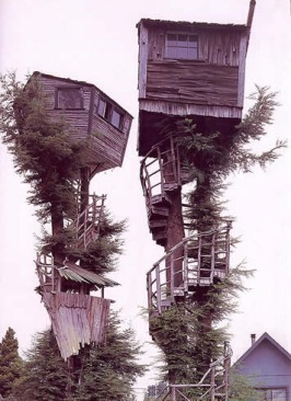 treehouses_insane