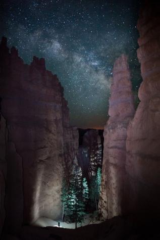 Exploring the Night