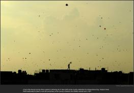 nytl_india_kites