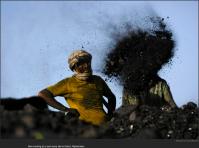 nytl_coal_toss