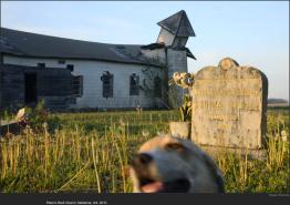 nytl_dilapadated_church