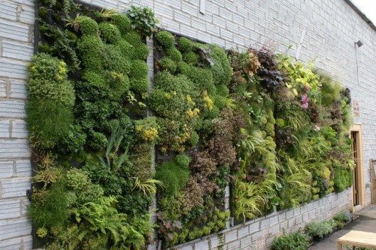 vert_garden
