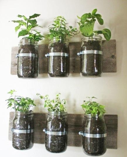 vert_garden_mason jar
