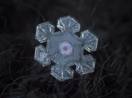 alexey_kljatov_snowflake_6