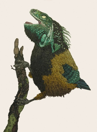 nicholas_digenova_iguana_bird