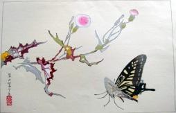 rakuzan_butterfly
