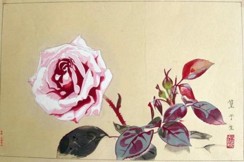 rakuzan_rose