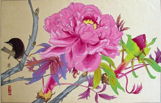 rakuzan_wow_flower