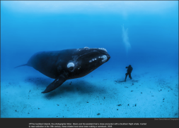 nytl_aquarian_encounter