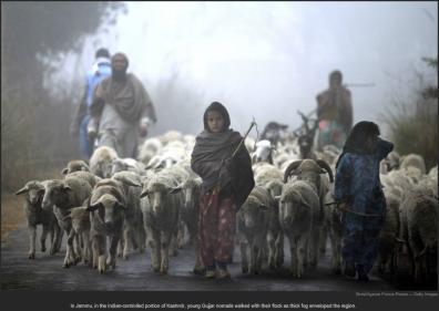 nytl_young_kasmir_herders