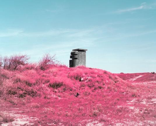 reuben_wu_pink_atlantic_wall_bayonne