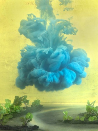 kim_keever_one_of_a_kind
