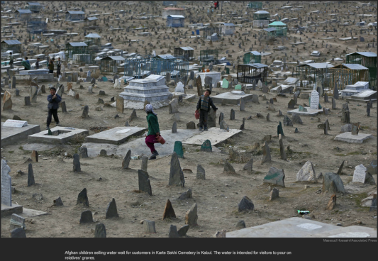 nytl_cemetary_water_sales