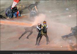 nytl_protestor_sprayed