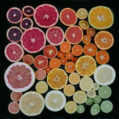 tones_of_citrus