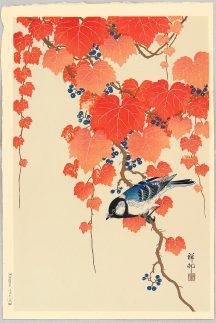 ohara_koson_blue_bird