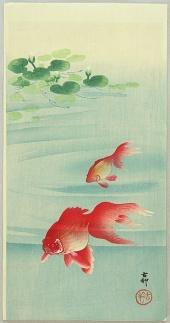 ohara_koson_gold_fish