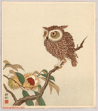 ohara_koson_owl