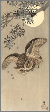 ohara_koson_owl_flight