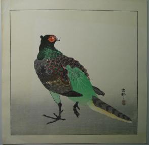 ohara_koson_pheasant