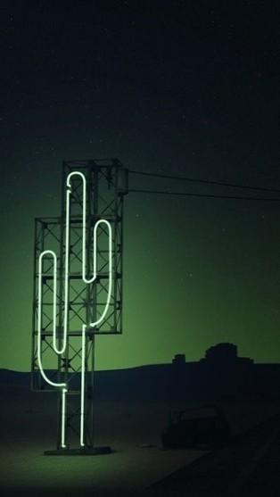 neon_cactus
