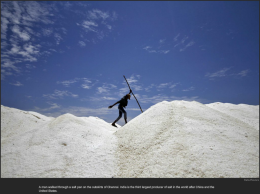 nytl_india_salt